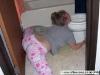 thumbs pyanye devushki drunk girl13 Пьяные девушки   Вот до чего доводит пьянство !